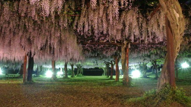 JA葬祭(JA岡山東) 和気町